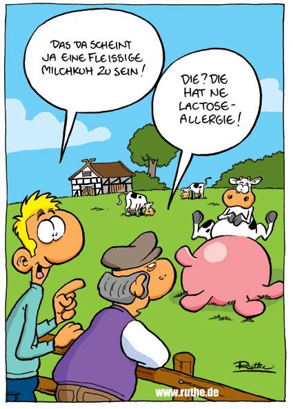 Single kochkurs aschaffenburg