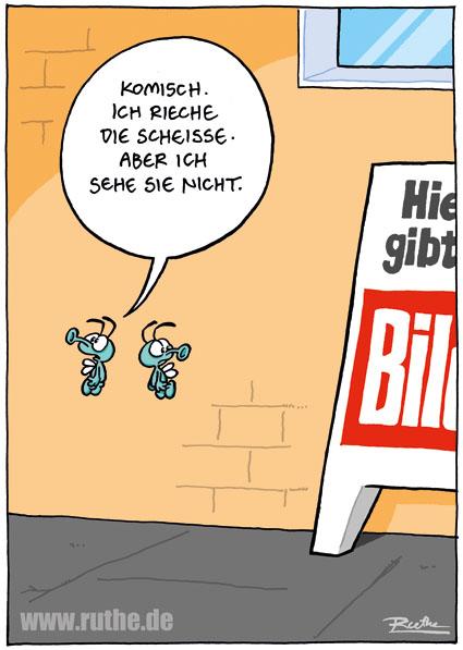 strip_1511.jpg